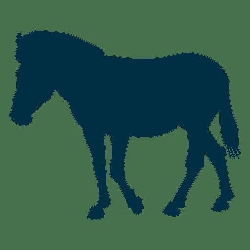 Pferd Silhouette Pferd Silhouette Transparent PNG