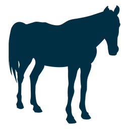 Horse still silhouette