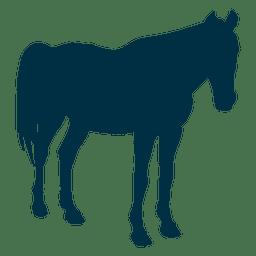 Pferd noch Silhouette