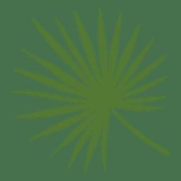 Ilustración de hoja de palma de señora