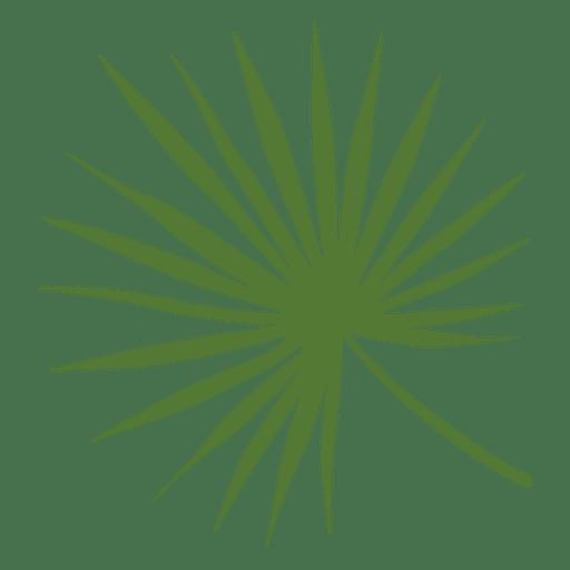 Ilustración de hoja de palma de dama