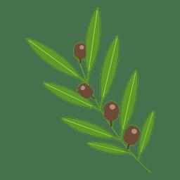 Ilustração de oliveira