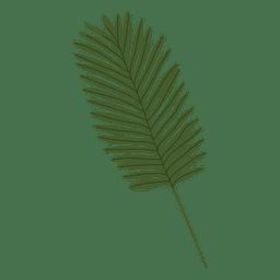 Ilustração da folha de palmeira