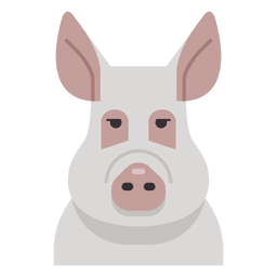 Ilustración de cerdo