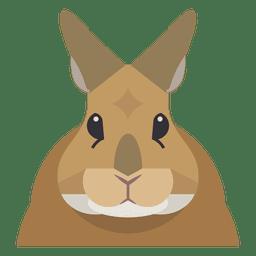 Kaninchen Abbildung