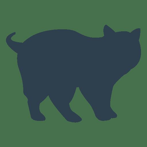 Silueta de gato de pliegue escocés Transparent PNG