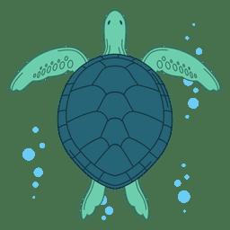 Ilustración de la tortuga de mar