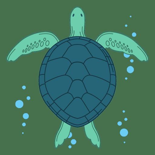 Ilustración de tortuga marina Transparent PNG