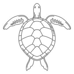 Línea de tortuga marina