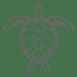 Linha de tartaruga de mar