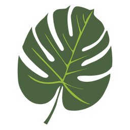 Tropical palm leaf illustration