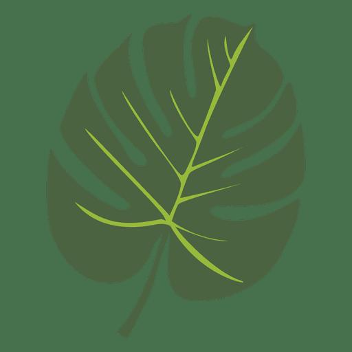 Tropical palm leaf illustration
