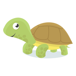 Turtle baby illustration