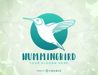 Hummingbird logo template design