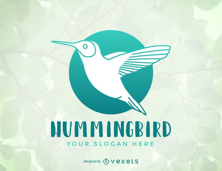 hummingbird logo template design vector download