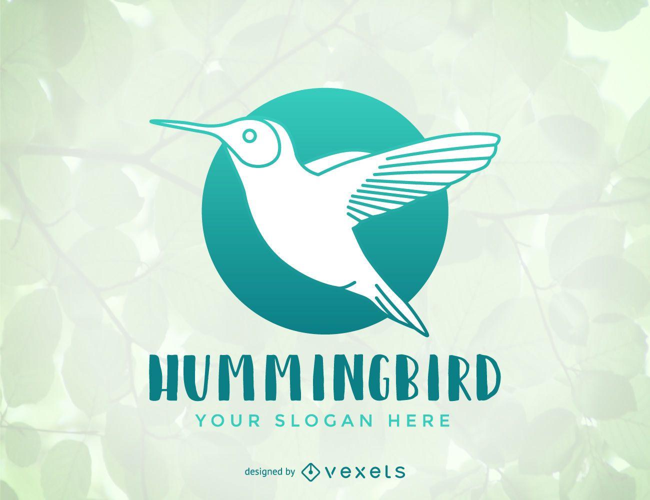 Hummingbird logo template design