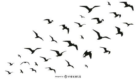Coleta de silhueta de pássaros
