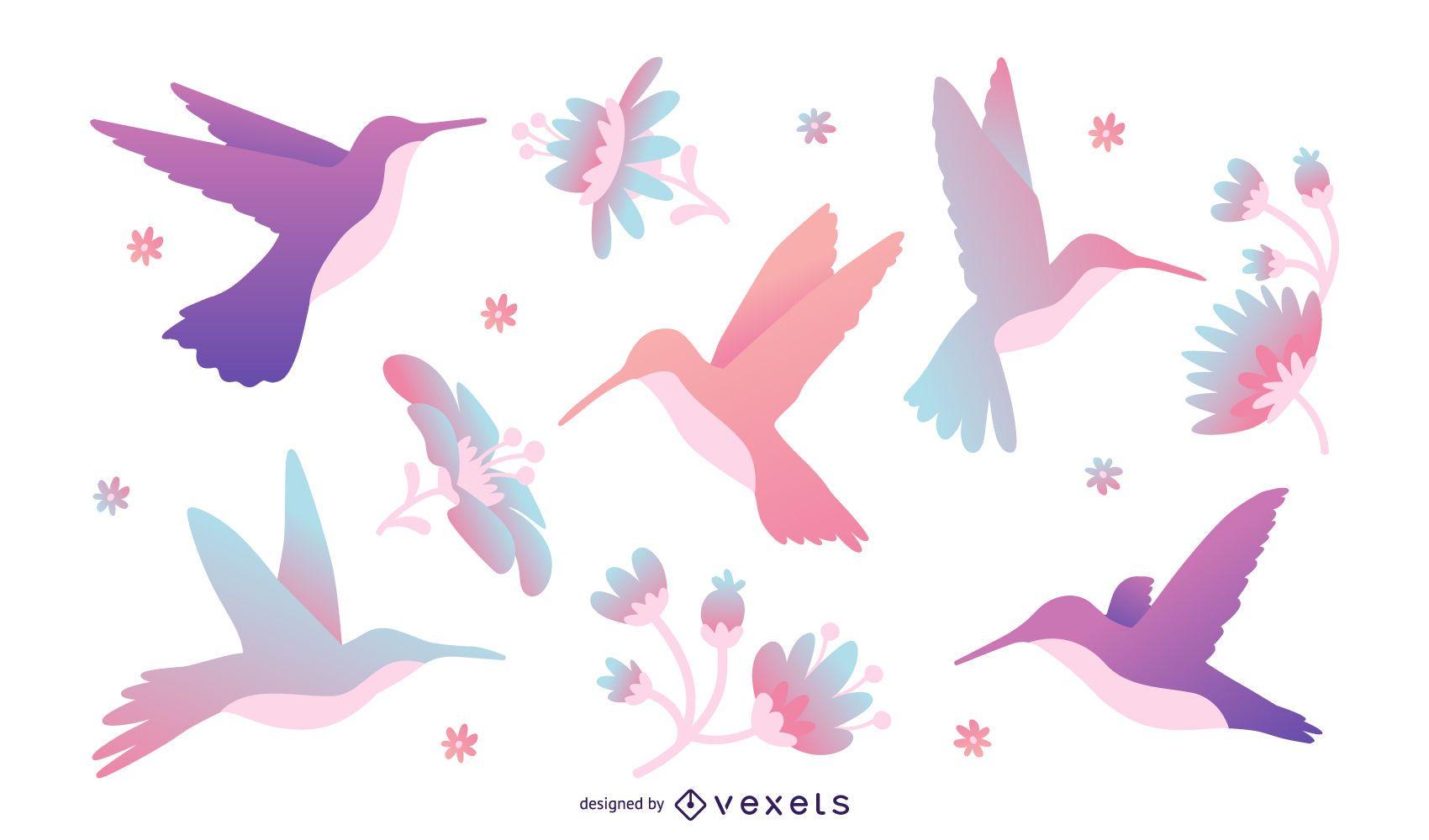 Conjunto de ilustración de colibrí de tonos pastel