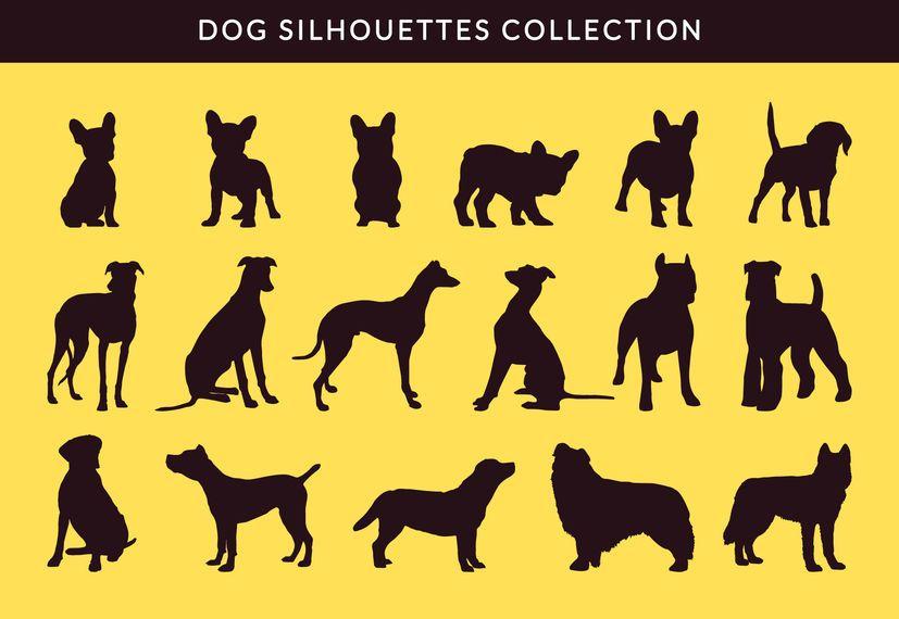 Silhouette der französischen Bulldogge und Greayhound Silhouette