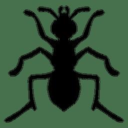 Ameisenschattenbild