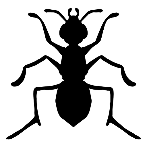 Transparent PNG & SVG Vector