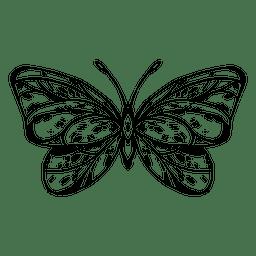 Desenho de borboleta