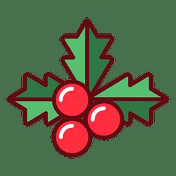 Weihnachtsmistel