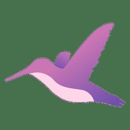 Colibri flying