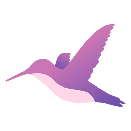 Colibri voando