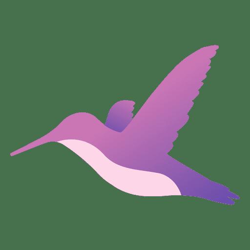 Colibri volando Transparent PNG