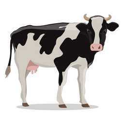 Cow illustration farm