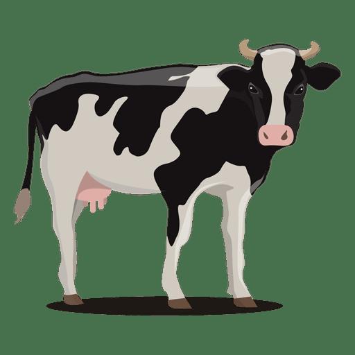 Cow illustration farm