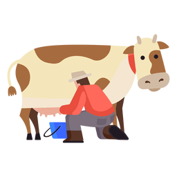 Cow milking illustration