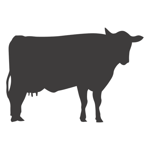 Cow standing vector Transparent PNG