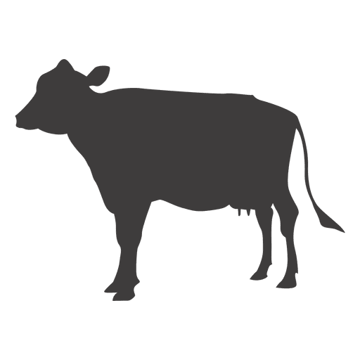 Vector de vaca Transparent PNG
