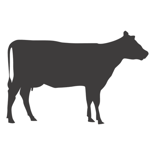 Cow walking vector Transparent PNG