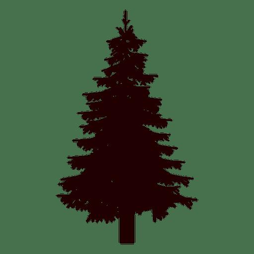 Fir tree silhouette