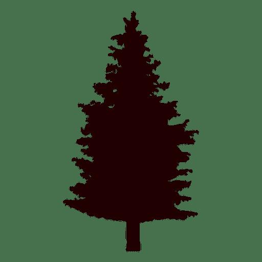 Fir Tree Vector Transparent Png Svg Vector