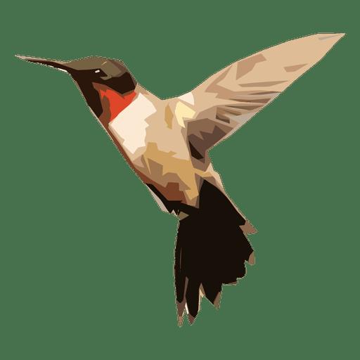 Hummingbird illustration Transparent PNG