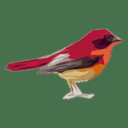Ilustración de gorrión rojo