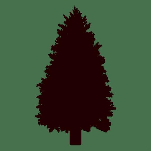 Spruce tree vector