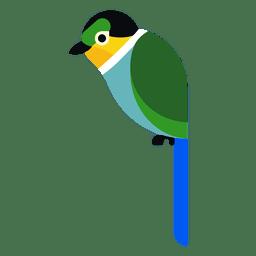 Ilustração de papagaio turquesa