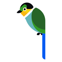 Turquoise parrot illustration