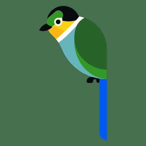 Turquoise parrot illustration