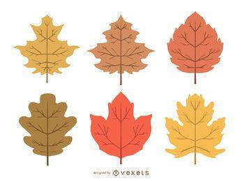 Conjunto de ilustración de delicadas hojas de otoño