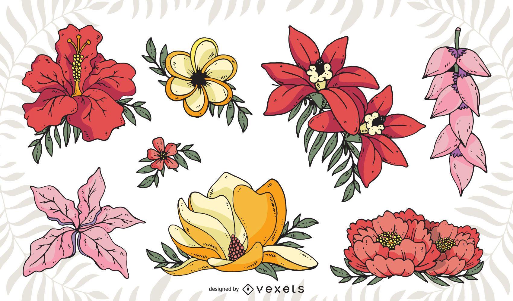 Pack de ilustraciones de flores tropicales