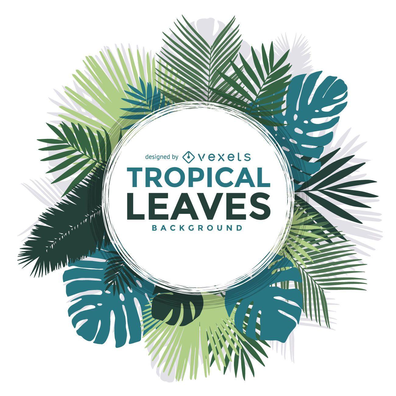 Marco de hojas de palmeras tropicales