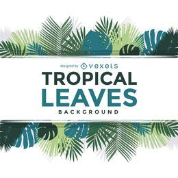 Palmeira tropical deixa o texto do quadro sobre branco