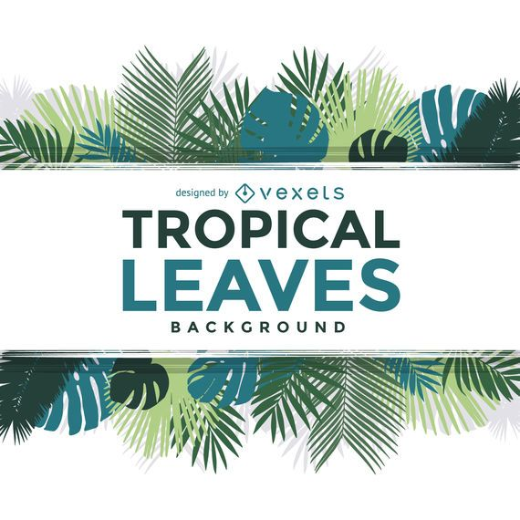 Tropical palm tree leaves frame text over white