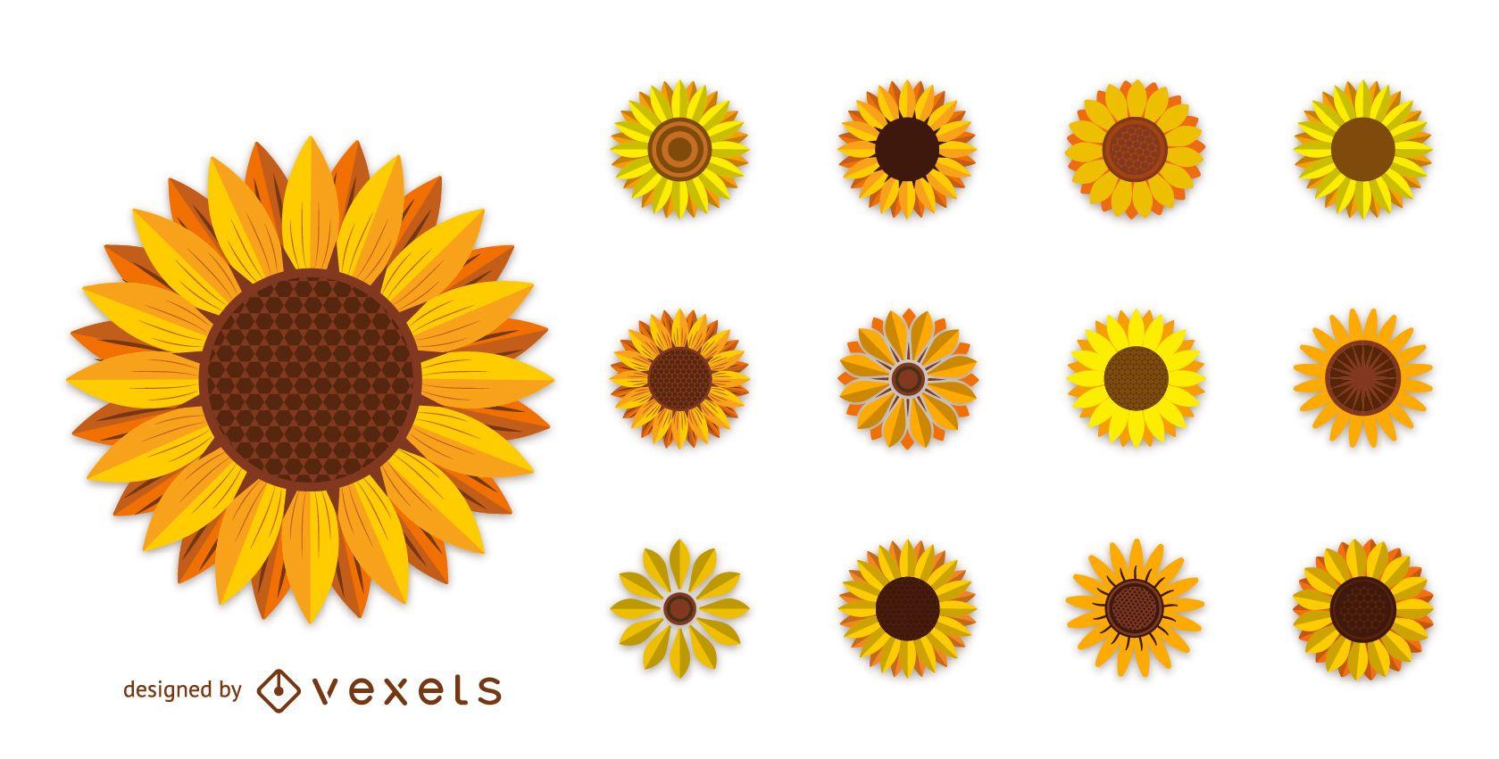 Set of sunflower illustrations